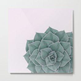 Big Green Echeveria Design Metal Print