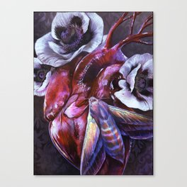 Moth and Heart Canvas Print