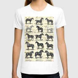 1895 Vintage Horse study T-shirt