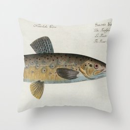 Vintage Illustration of a Brown Trout (1785) Throw Pillow