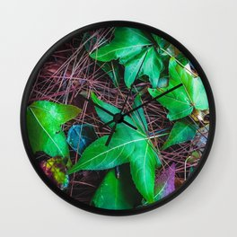 closeup green leaves on the dry grass Wall Clock