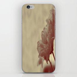 Softly softly iPhone Skin
