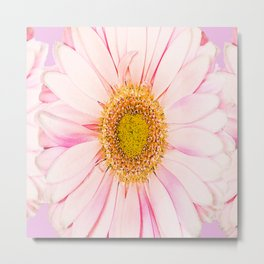Pink flower with pink background - lovely girlish summer feeling Metal Print
