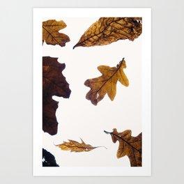Gloaming  Art Print