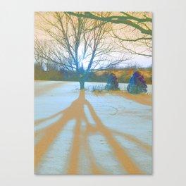 Serine Snow Scene Canvas Print