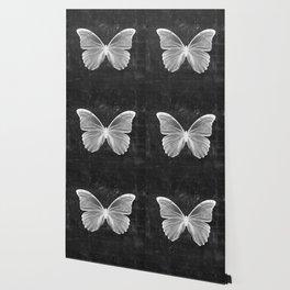 Butterfly in Black Wallpaper