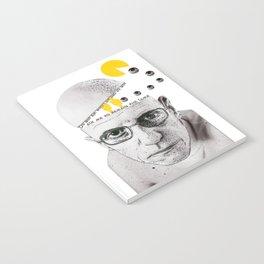 Foucault Notebook