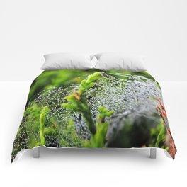 Beauty Between The Trees Comforters