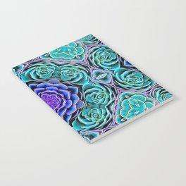 Echeveria Bliss Notebook