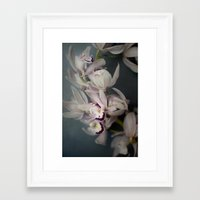 orchid Framed Art Prints featuring Orchid by Pure Nature Photos