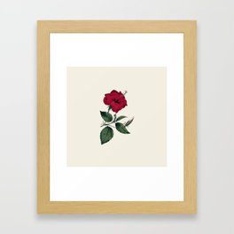 Vintage ivory white red green botanical flower Framed Art Print