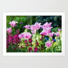 Flowers alive Art Print