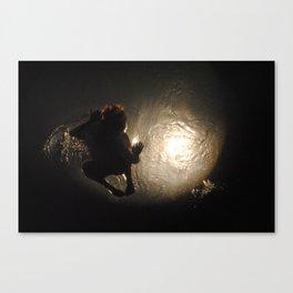 the great escape (2) Canvas Print