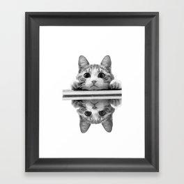 Cat reflected Framed Art Print