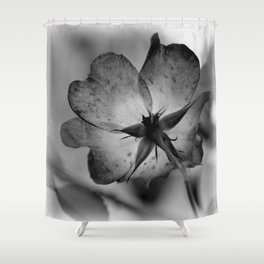 Delicate transparency Shower Curtain