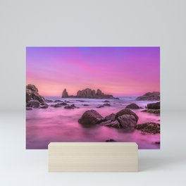 Rosie Sunset Mini Art Print
