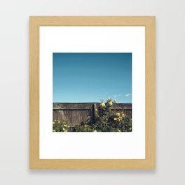 Yellow flowers over a wooden fence Framed Art Print
