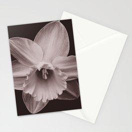 Daffodil 1 Stationery Cards