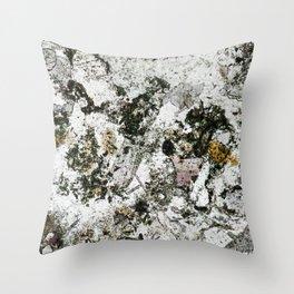 Hornfels 02 - Frozen Still Life Throw Pillow
