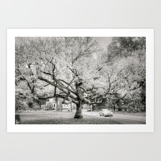 Lord of the rings tree Art Print