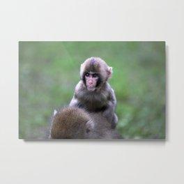 Little Monkey Metal Print