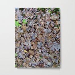 Last Years Fallen Foliage Metal Print