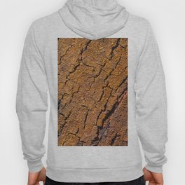 Orange tree bark with rustic wrinkles Hoody