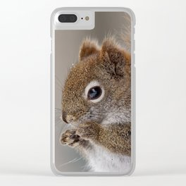 American Red Squirrel Portrait Clear iPhone Case