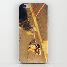 Cute Yorkshire lovers iPhone & iPod Skin