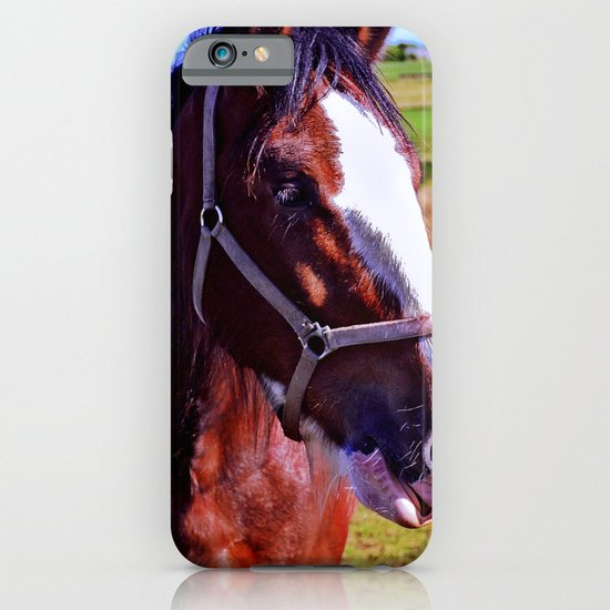 Scottish Clydesdale iPhone & iPod Case