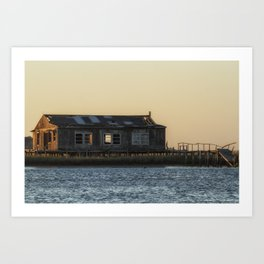 Waterfront Property Art Print
