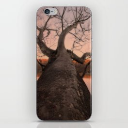 nature's perspective iPhone Skin