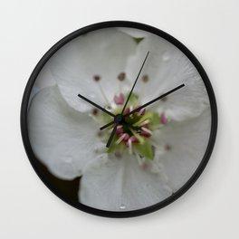 Pear Tree Bloom Wall Clock