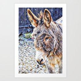 Clovelly Donkey Art Print
