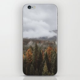 Yosemite II iPhone Skin