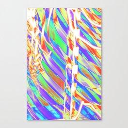 Light Dance Carnival Ribs edit 2 Canvas Print
