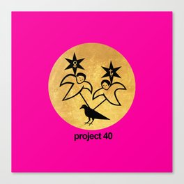 project 40 pink Canvas Print