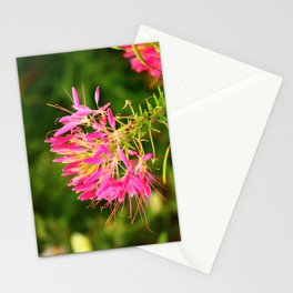 A Delicate Beauty Stationery Cards