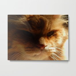 Done with you Metal Print