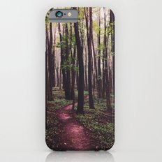 The Paths of Life Wander and Turn iPhone 6s Slim Case