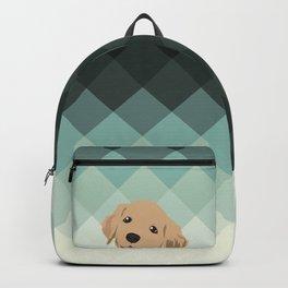 Lab Backpack