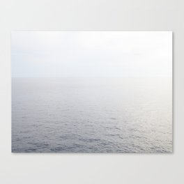 Silvers Canvas Print