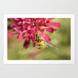 Macro flower 2 Art Print