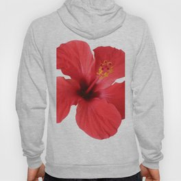 Scarlet Hibiscus Tropical Flower Vector Hoody