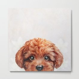 Toy poodle-reddish brown Dog illustration original painting print Metal Print
