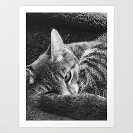 my pet, Peeve Art Print
