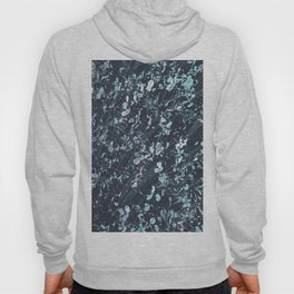 Glass Garden Hoody