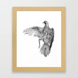 Pigeon Dissection Framed Art Print