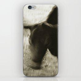bull shaking head iPhone Skin