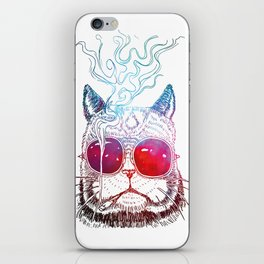 Thomas O'malley the Alley Cat iPhone Skin